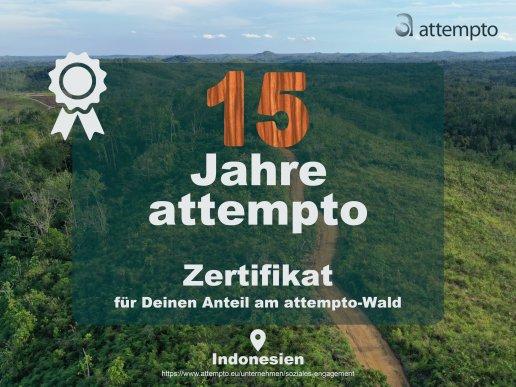 15 Jahre attempto - Zertifikat